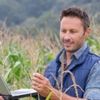 Единый сельскохозяйственный налог для ИП и ООО в 2017 году