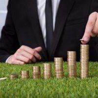 Порядок и правила вывода прибыли из ООО и ИП в России