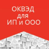 Процедура получения кодов ОКВЭД для ИП и ООО