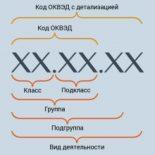 Коды ОКВЭД: значение и расшифровка