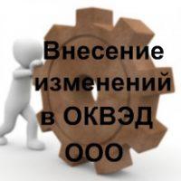 Внесение изменений в ОКВЭД: особенности процедуры для ООО